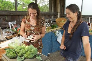 Vermonters find purchasing season products direct from farm stands to be a good value. Photo: Rooted in Vermont